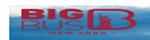 eng.bigbustours.com coupons
