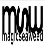 magicseaweed.com coupons