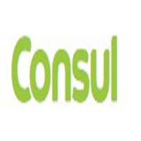 loja.consul.com.br coupons