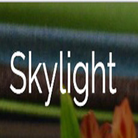 skylightframe.com coupons