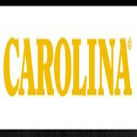 carolinashoe.com coupons
