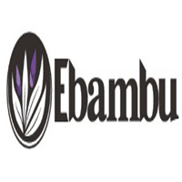ebambu.ca coupons