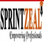 sprintzeal.com coupons