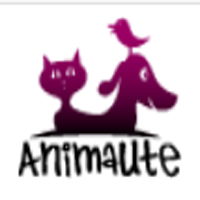 animaute.fr coupons